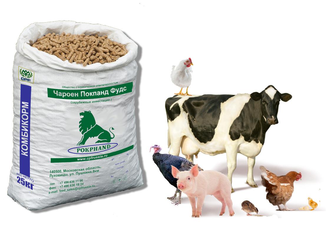 ANIMAL FEED Brokemann Co GmbH